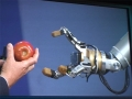 IDF Robotic