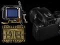 Canon EOS 650D, nuovo autofocus ibrido: ecco come funziona