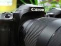 Canon EOS 90D e EOS M6 Mark II