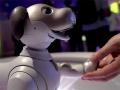 Affinity in Autonomy: la mostra Sony indaga il rapporto uomo/macchina