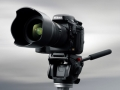 Nikon D800, primo contatto
